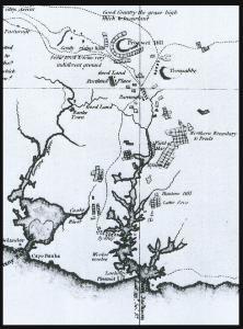 syd-1802.jpg